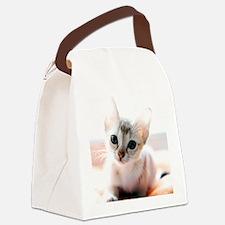 DSC333 Canvas Lunch Bag
