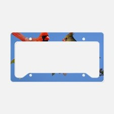 9x7 License Plate Holder