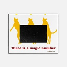 Magic Number 3 Flying Tripawds White Picture Frame