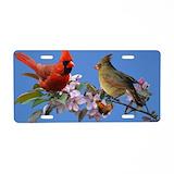 Cardinal bird License Plates