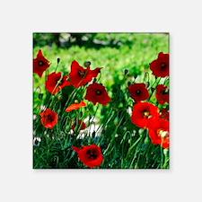 "Poppy Heads Square Sticker 3"" x 3"""