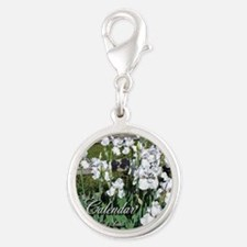Cover Silver Round Charm