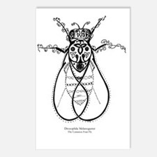 2-fly with words Postcards (Package of 8)