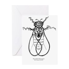 2-fly with words Greeting Card