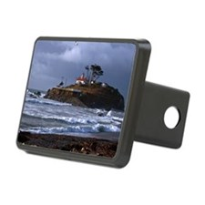 (14) battery point lightho Hitch Cover