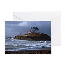 (14) battery point lighthouse  gull Greeting Card