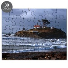 (14) battery point lighthouse  gull Puzzle