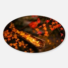 Autumn Maple Decal