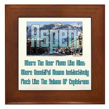 Aspen Framed Tile