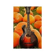 MiniPosterPrint_Gibson_Pumpkins Rectangle Magnet