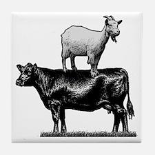 Goat on cow-1 Tile Coaster