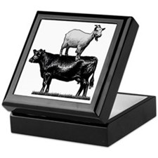 Goat on cow-1 Keepsake Box