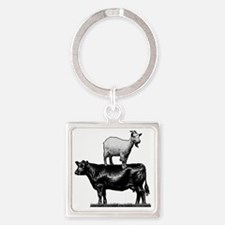 Goat on cow-1 Square Keychain