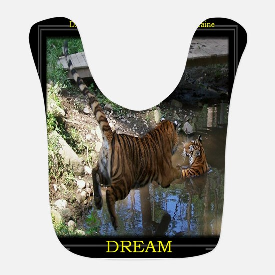 14x16 Cocheny - Jumping in water framed Bib