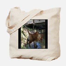 16x20 Cocheny - Jumping in water framed Tote Bag