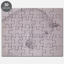 Blue Steel Puzzle