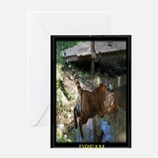 23x35 Cocheny - Jumping in water fra Greeting Card