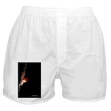 BAT108 Boxer Shorts
