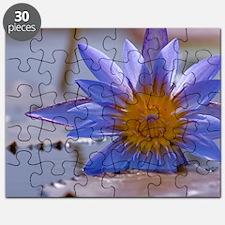 Brillance Puzzle