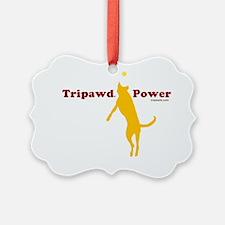 tripower 10x10 wht csue Ornament