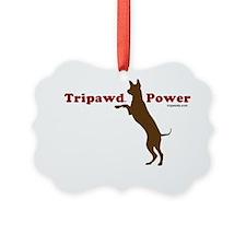 tripower 10x10wht jerry Ornament