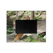 11x9 Kochime7 - Running 1 Picture Frame