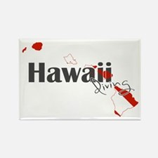 Hawaii Diver Rectangle Magnet