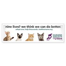 9 lives Bumper Sticker