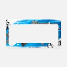 wiper 5x2 License Plate Holder