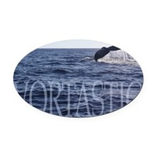 Vortastic Oval Car Magnet