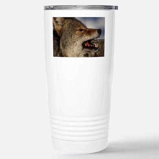 coyote vole portrait Stainless Steel Travel Mug