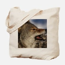 coyote vole portrait Tote Bag