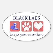 FIN-labs-black-CROP Decal