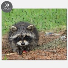 Raccoon Puzzle