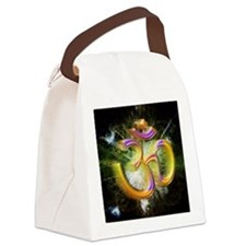 ohm Canvas Lunch Bag