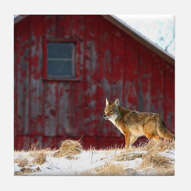 coyote barn Tile Coaster