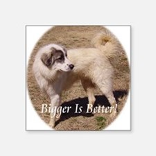 "bigger is better Square Sticker 3"" x 3"""