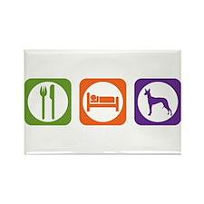 Eat Sleep Hound Rectangle Magnet (10 pack)