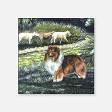 "sable sheltie with sheep Square Sticker 3"" x 3"""