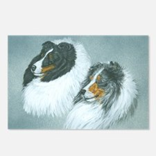 Blue and Tri Sheltie Head Postcards (Package of 8)