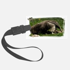 (16) Giant Anteater Luggage Tag