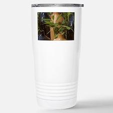 3-Garden Setting Travel Mug