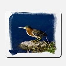 (16) Green-Backed Heron Mousepad