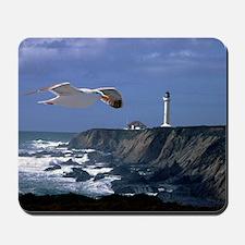 (4) lighthouse  seagull Mousepad