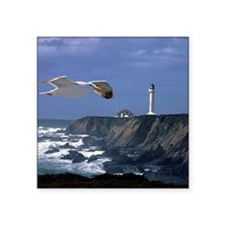 """(4) lighthouse  seagull Square Sticker 3"""" x 3"""""""