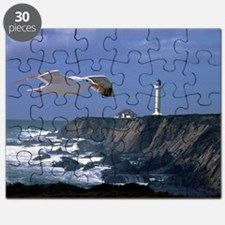 (4) lighthouse  seagull Puzzle