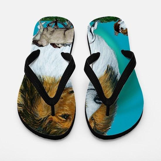 sable herding Flip Flops