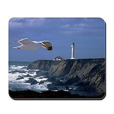 (11) lighthouse & seagull Mousepad