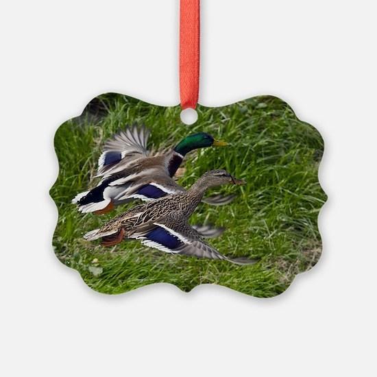 (3) mallards flying Ornament