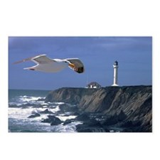 (14) lighthouse & seagull Postcards (Package of 8)